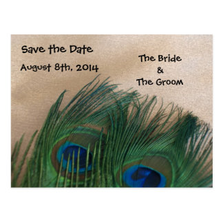 Golden Peacock Feathers Save the Date Postcard