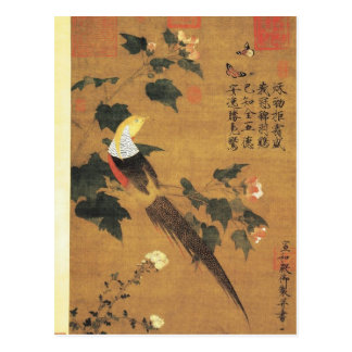 Golden Pheasant and Cotton Rose Flowers by Emperor Postcard