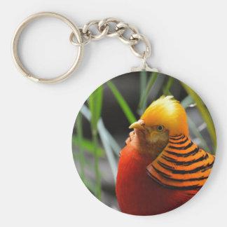 Golden Pheasant Bird Key Chains
