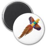 Golden Pheasant Round Magnet