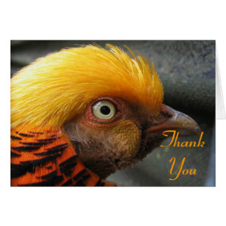 Golden Pheasant Thank You Note Card