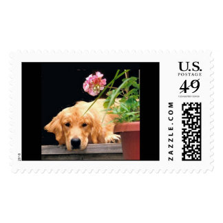 Golden Pink Flower Postage