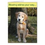 Golden Pinwheel Birthday Greeting Card