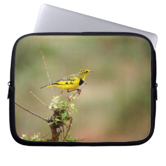 "Golden pipit, Kenya, 10"" Photo Computer Sleeve"