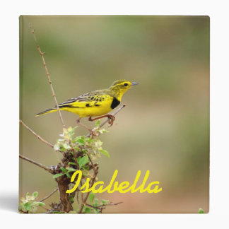 Golden pipit, Kenya, Photo 3 Ring Binder