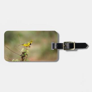 Golden pipit, Kenya, Photo Bag Tag