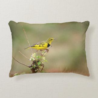 Golden pipit, Kenya, Photo Decorative Pillow