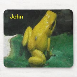 Golden Poison Dart Frog/Phyllobates terribilis Mouse Pad