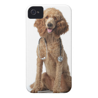 Golden Poodle Dog wearing a stethoscope iPhone 4 Cases