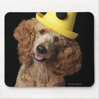Golden Poodle Dog wearing a yellow clown hat Mouse Pad