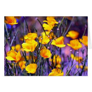 Golden Poppy Card