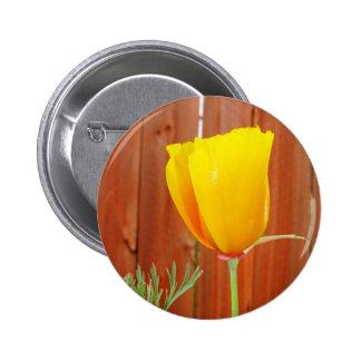 Golden Poppy Pinback Button