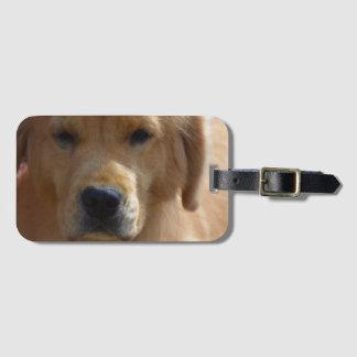 Golden Pup Bag Tag