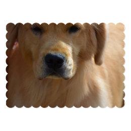 Golden Pup Card