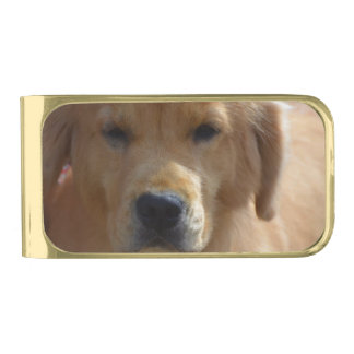 Golden Pup Gold Finish Money Clip