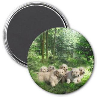 Golden Puppies Magnet
