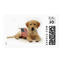 Golden Puppy and American Flag Postage
