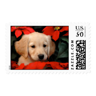 Golden Puppy and Poinsettia Postage