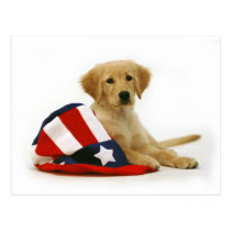 Golden Puppy and Uncle Sam Hat Postcard