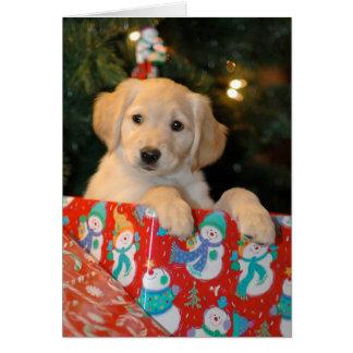 Golden Puppy Christmas Card