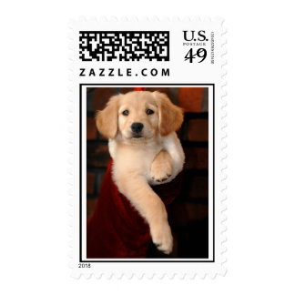 Golden Puppy Christmas Stocking Stuffer Stamp