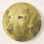Golden Puppy  Coaster