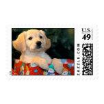 Golden Puppy Gift Art Postage