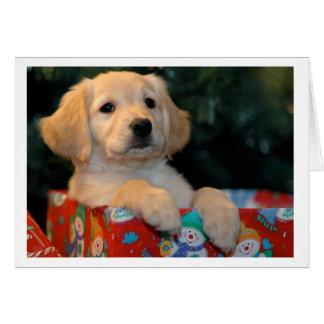 Golden Puppy Gift Christmas Card