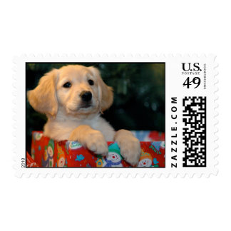 Golden Puppy Gift Postage Stamps