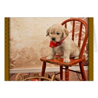 Golden Puppy on Chair Card