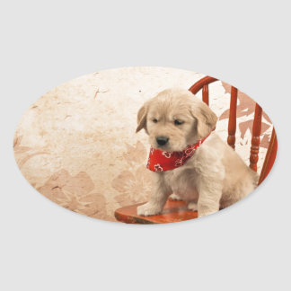 Golden Puppy on Chair Oval Stickers