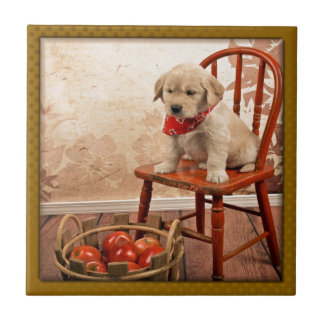 Golden Puppy on Chair Tile