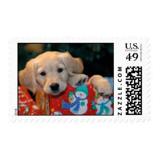 Golden Puppy Present Stamp