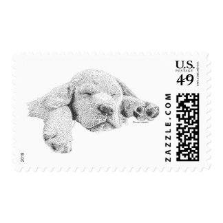 Golden Puppy Stamps