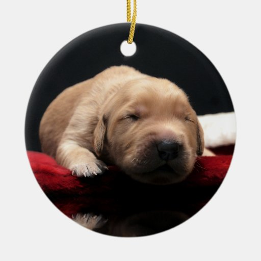 Golden Puppy & Stocking Christmas Ornamet Ornament