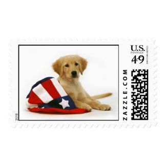 Golden Puppy Uncle Sam Postage