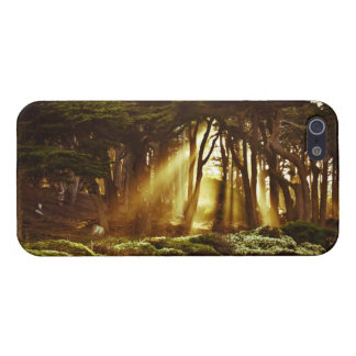 Golden Rays of Light iPhone 5 Cases