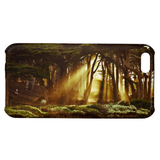 Golden Rays of Light iPhone 5C Cases