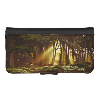 Golden Rays of Light Phone Wallet Cases