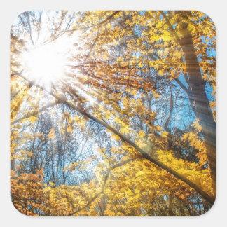 Golden Rays Square Sticker