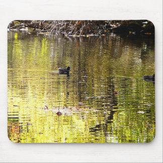 Golden Reflection Mousepads