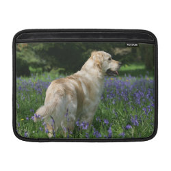 Golden Retreiver in Flowers Sleeve For MacBook Air
