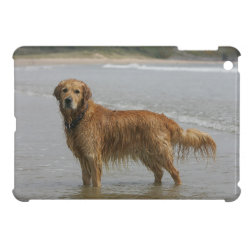 Golden Retreiver in the Sea Case For The iPad Mini