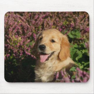 Golden Retreiver Puppy Mouse Pad