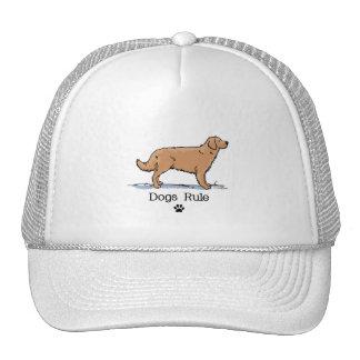 Golden Retreiver - Red Trucker Hat