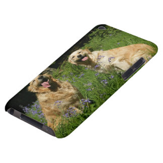 Golden Retreivers in Grass iPod Case-Mate Cases