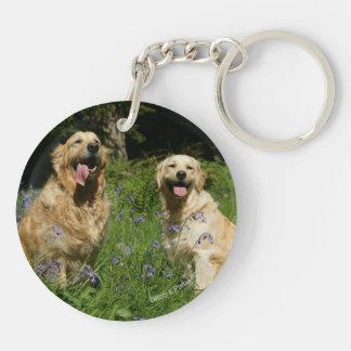 Golden Retreivers in Grass Keychain