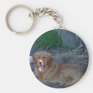 Golden Retrieve Keychain
