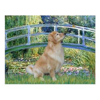 Golden Retriever 11 - Lily Pond Bridge Post Card
