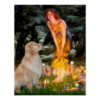 Golden Retriever 11 - Mid Eve Poster